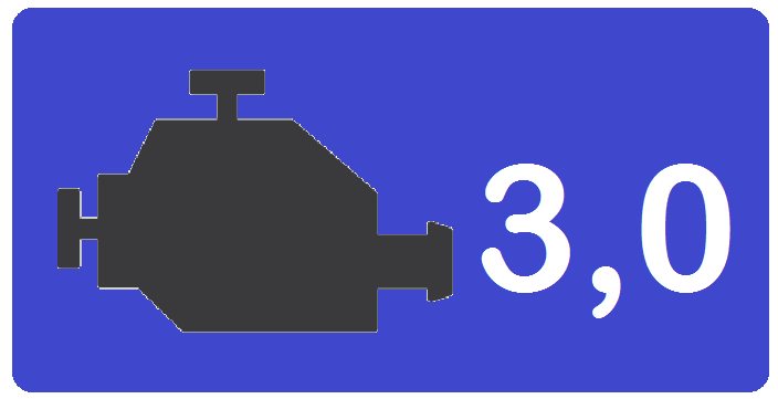 Engine 3,0  F1C