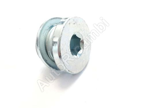 Cam head plug Iveco Daily 2000> 2014>, Fiat Ducato 244/250/2014> for arresting device