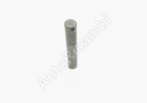 Differential pin for Fiat Ducato 250