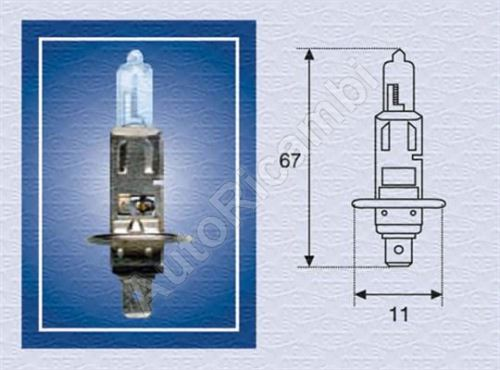 The bulb 12V H1 55W