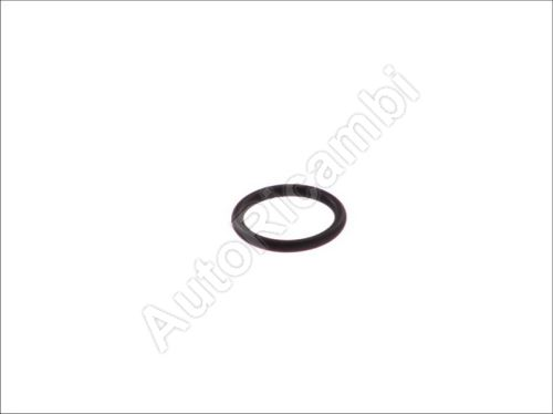 Engine flange O-ring Iveco Daily 2.8
