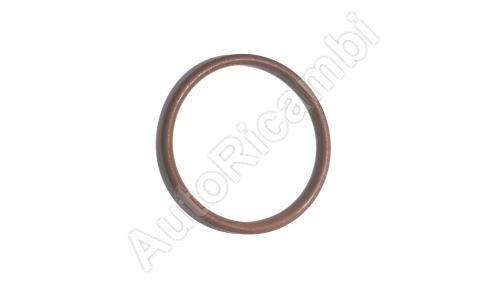 O - ring Iveco Cursor 8 - for the injector case