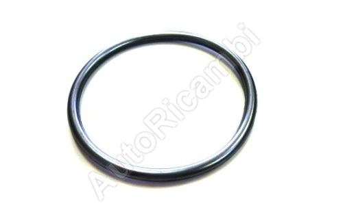 Water pump gasket Iveco Daily, Fiat Ducato 2,3 O-ring (smaller)
