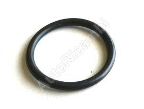 Tesniaci krúžok skrutky oleja Iveco Daily 2,62x23,47 mm