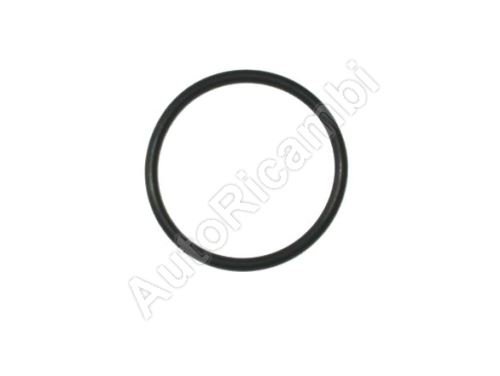 Gasket Fiat Ducato 14> 2,62x36,17- o-ring