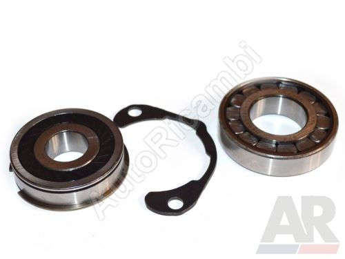 Gearbox bearing Fiat Ducato 230/244/250, 5-speed, set