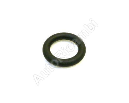 EGR valve seal Iveco Daily 3,0 euro4 O-ring
