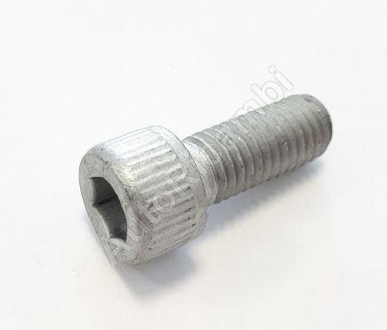 Screw Iveco M10x1,5 x 25 - Allen key